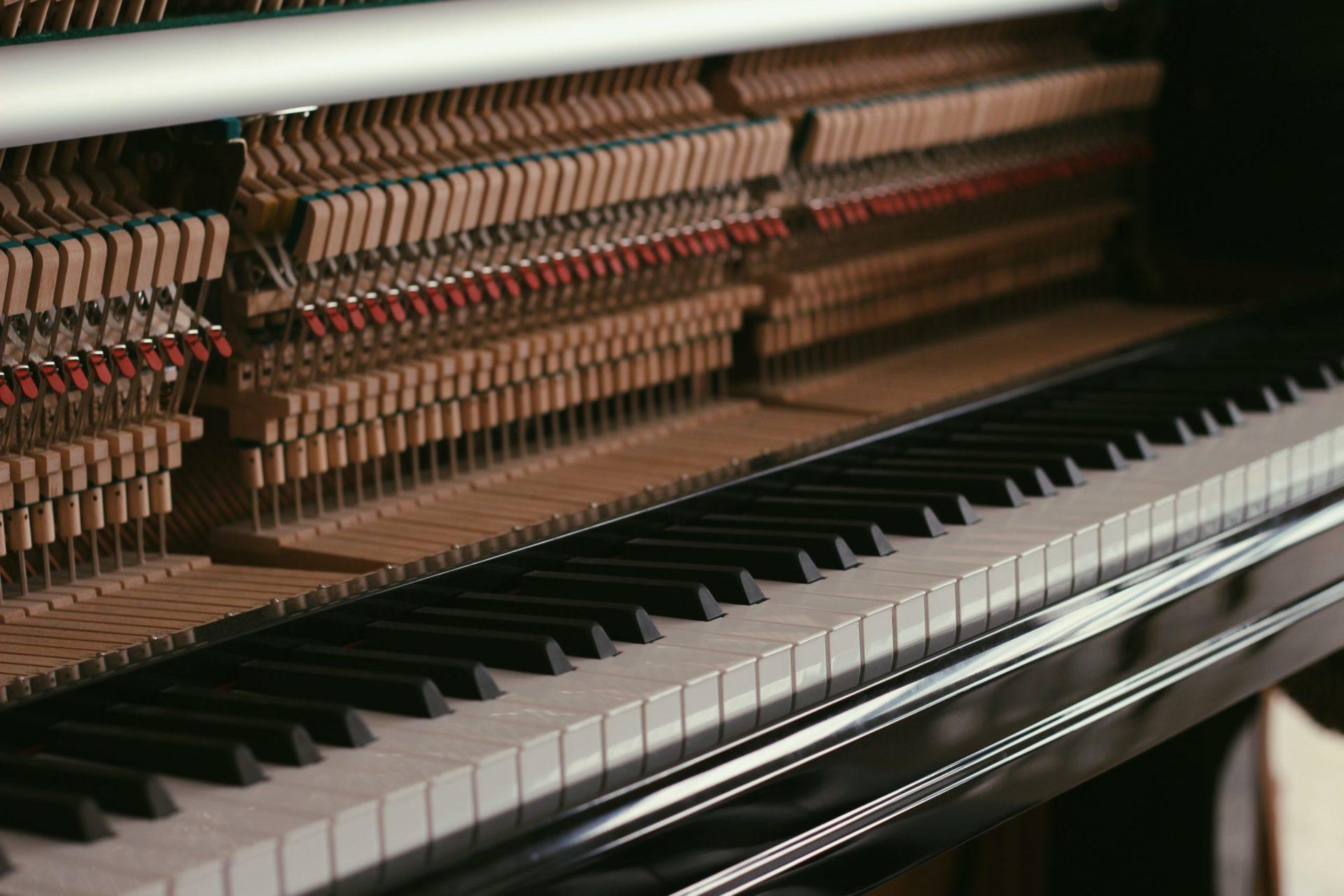 Anatomie du piano